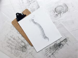 chiropractor for sciatica
